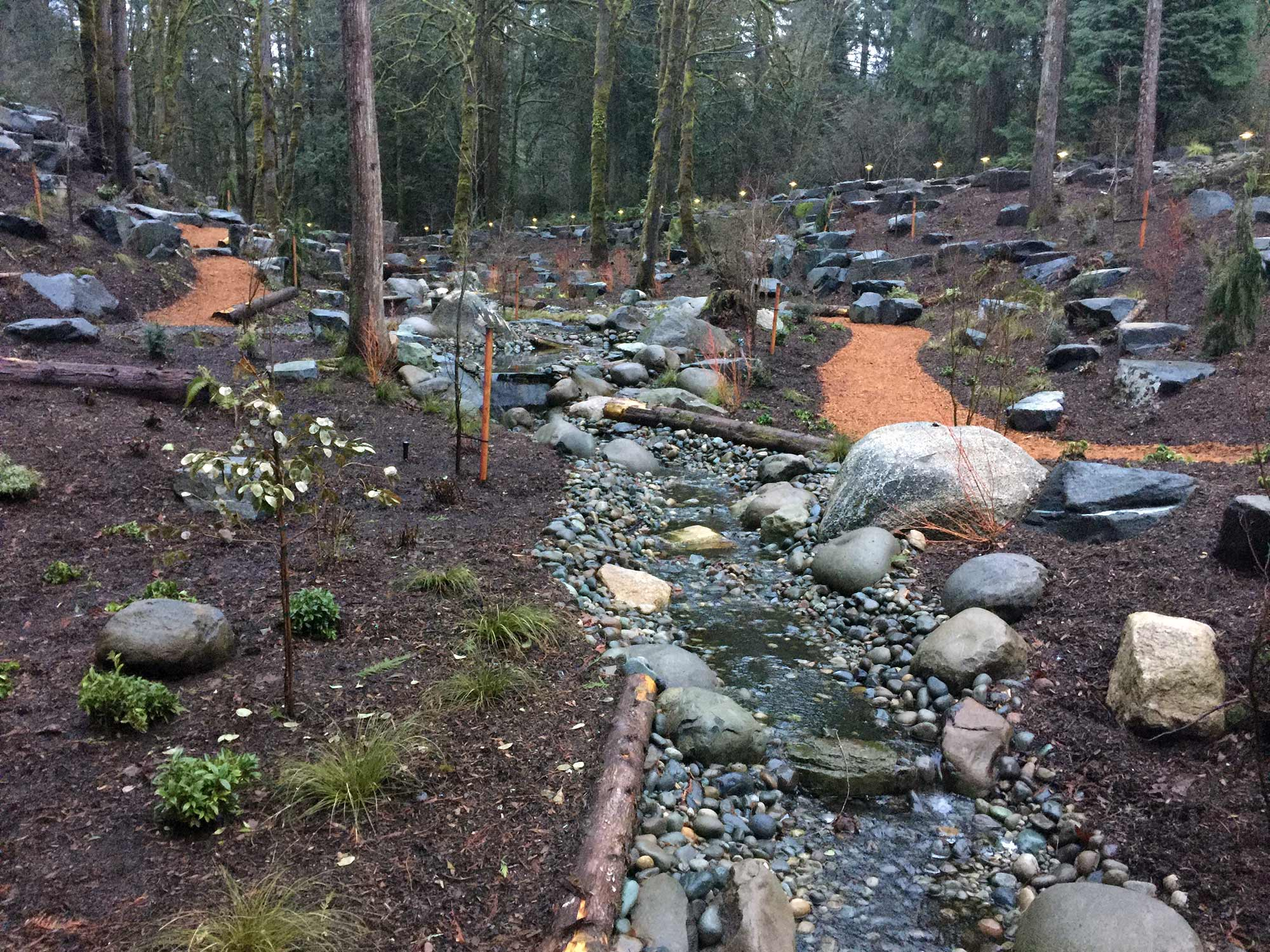 Softscaping with pond, pathways